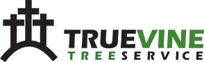 True Vine Tree Service